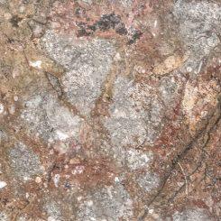 Gran Fossil