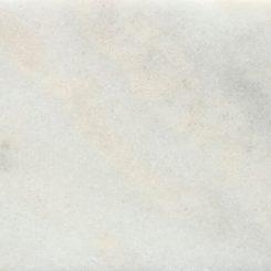 Rosa Bellisimo