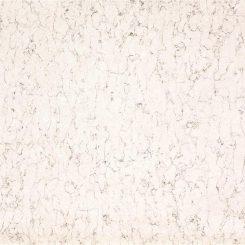 white-arabesque